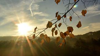 Sonnig und frisch: Herbst zeigt sich von seiner schönen Seite