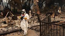 Waldbrände in Kalifornien: Feuerwehr sucht nach über 600 Vermissten