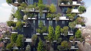 """""""Vertikaler Wald"""" für gutes Klima: Mailand lässt Bäume aus Hochhäusern sprießen"""