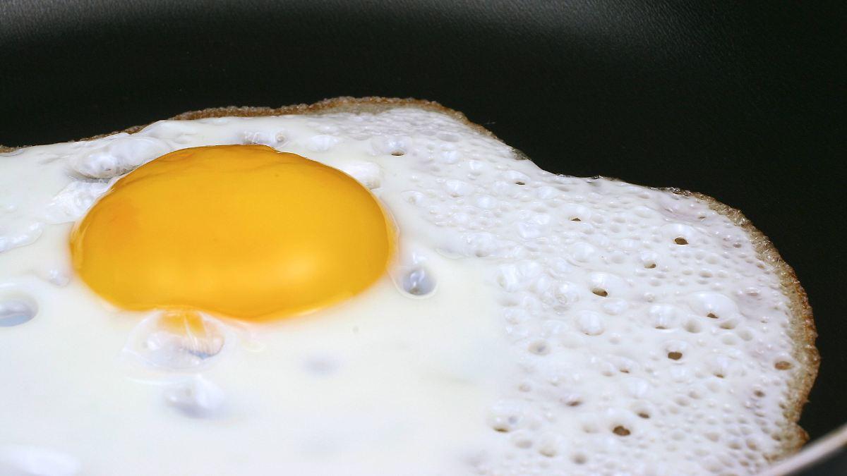 US-Startup bringt Pflanzen-Ei nach Deutschland