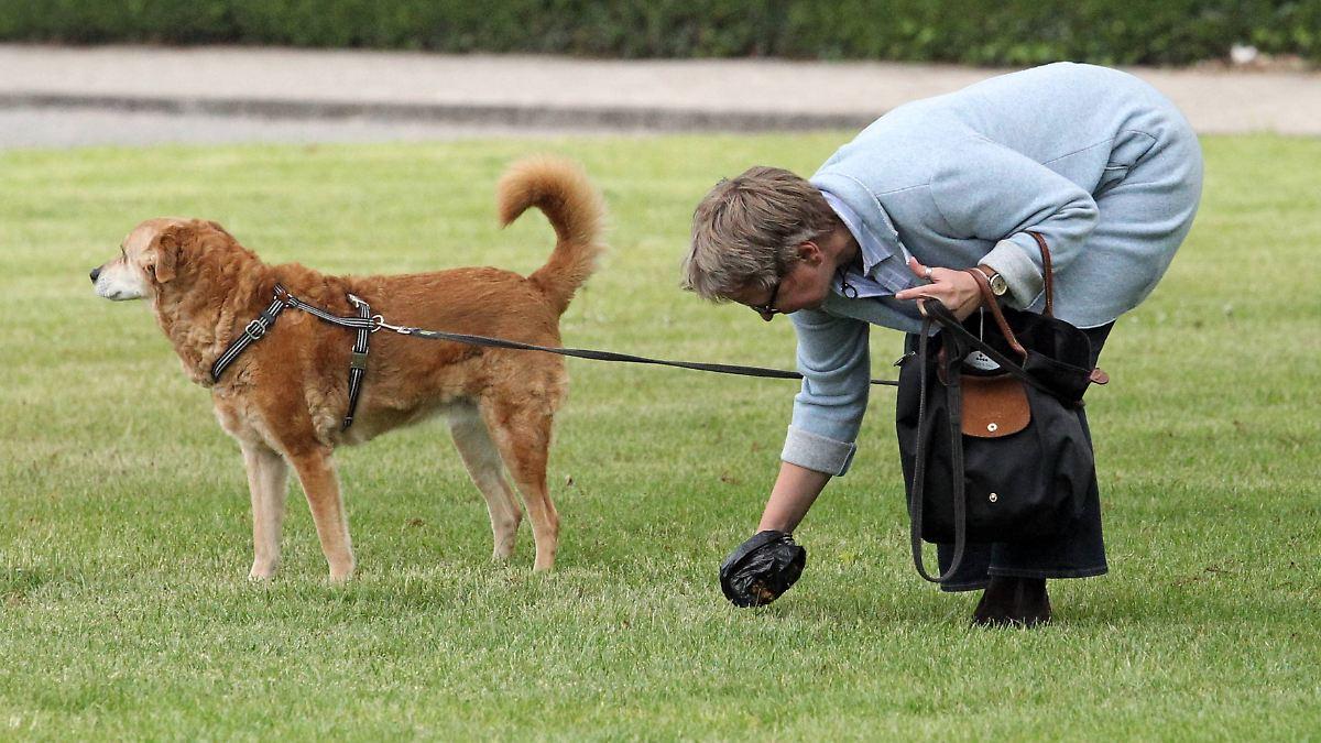 Kann man Hundekot ökologisch entsorgen?