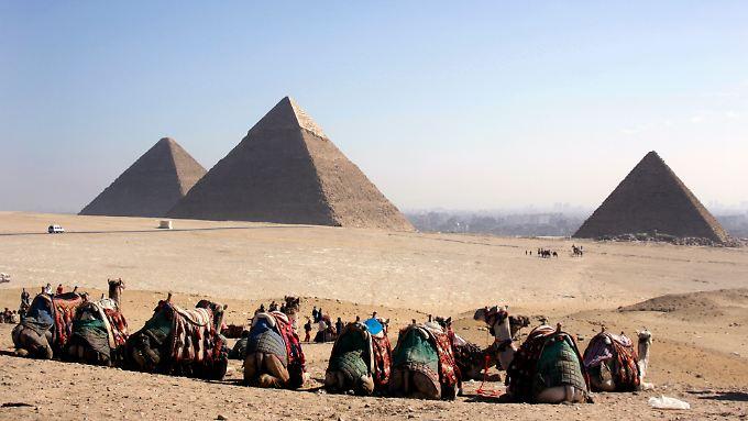 Die Online-Enzyklopädie Wikipedia sieht sich auf einer Stufe mit den Pyramiden.