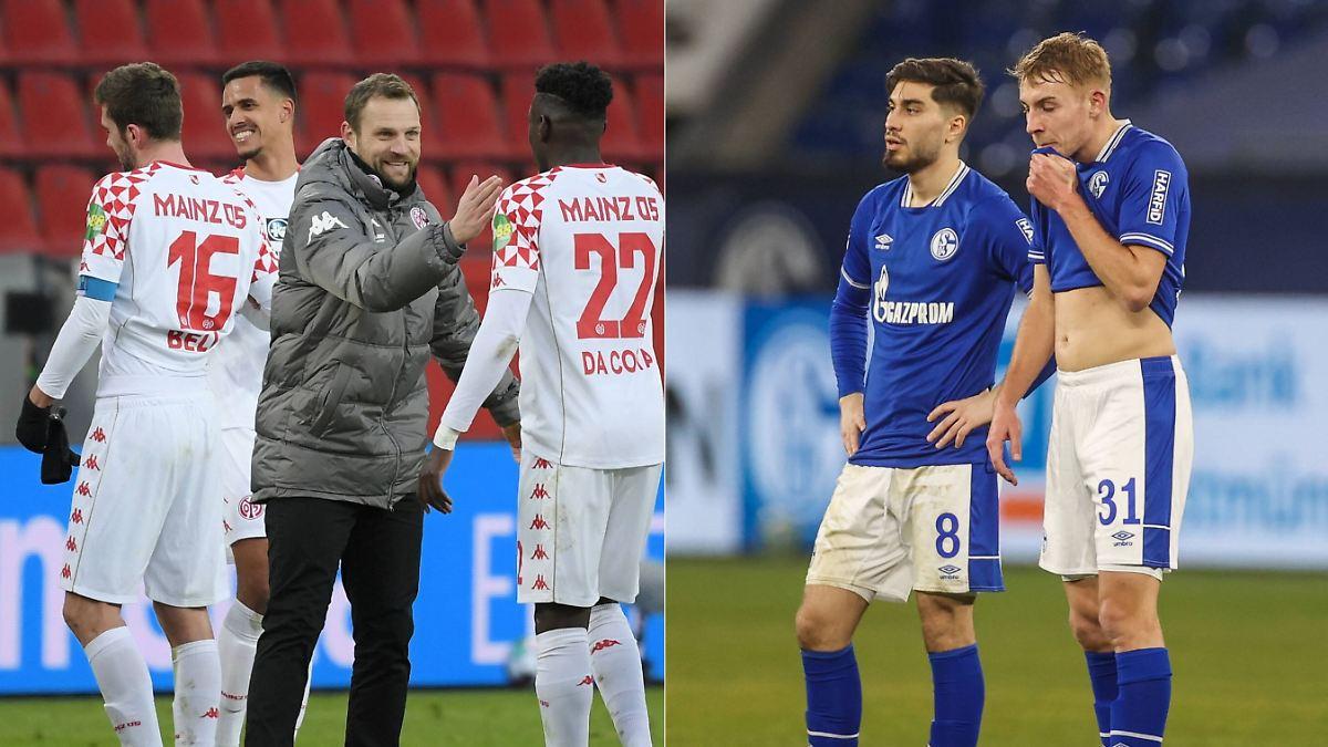 """Schalke scheitert mit Projekt """"Stallgeruch"""""""
