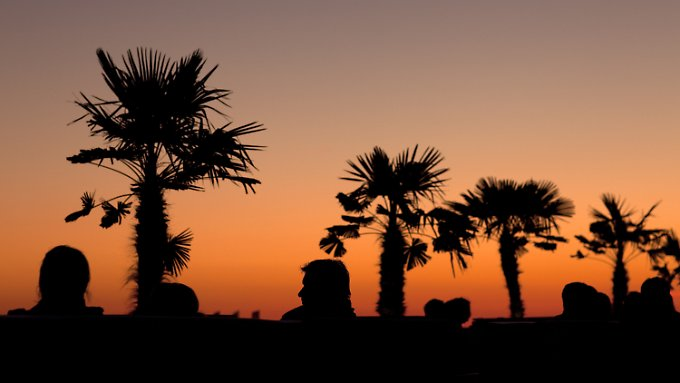 Sonnenuntergang unter Palmen: tropische Gefühle am Strand von Rostock-Warnemünde.