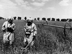 Spezialeinheiten messen auf einem Feld innerhalb der Sicherheitszone von Tschernobyl die Radioaktivität (im Mai 1986).