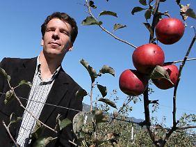 Der Schweizer Daniel Gerster steht in seiner Obstplantage in Pjöngjang. Er kämpft dagegen, dass vor allem die Kinder nur von Reis, Kartoffeln und Mais, leben.