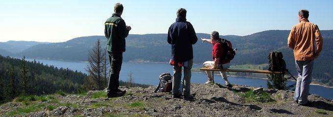 Blick auf den Schluchsee - Wanderer auf dem Schluchtensteig bekommen immer wieder tolle Ausblicke geboten.