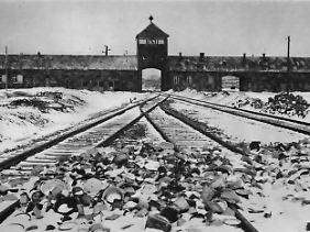 Sechs Millionen Juden töteten die Deutschen, mehr als eine Million alleine im Vernichtungslager Auschwitz.