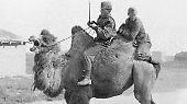 """""""Hitlers Krieg"""" im Osten: Das Unternehmen Barbarossa"""