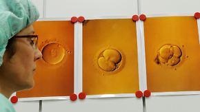 Gentests an Embryonen: Politiker diskutieren drei PID-Anträge