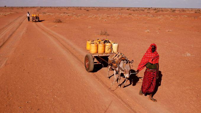 Eine Frau in Nordostkenia holt mit einem Eselskarren Wasser von einem Truck. Die schlimmste Dürre seit über einem halben Jahrhundert plagt das Land.