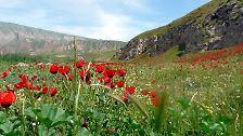 Tourismus statt Taliban: Afghanistans schöne Seiten