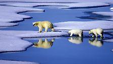 Klimawandel: Nicht mehr viel Zeit bis 2015