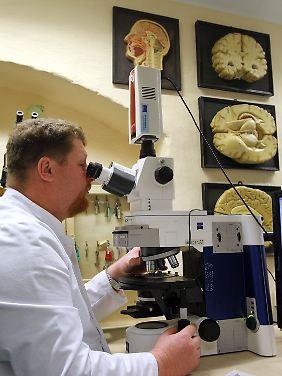 Pahnke und sein Team haben eine neue Therapieoption für die Alzheimer-Demenz entdeckt.
