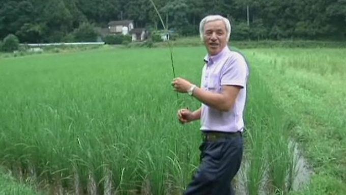 Leben im Fukushima-Sperrgebiet: Bauer trotzt der Verseuchung