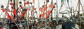 Bilderserie: Rügen - die größte deutsche Insel