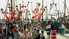 Kreide, Sand und lange Strände: Rügen - die größte deutsche Insel