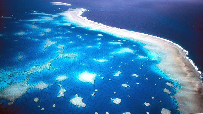 """Das Great Barrier Reef vor der Ostküste Australiens. 1770 schloss Cooks """"HMS Endeavou"""" unangenehme Bekanntschaft mit dem Riff."""