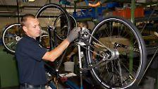 Tausende Drahtesel pro Tag: Deutschlands größte Fahrradfabrik