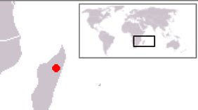 Die Madagaskar-Moorente lebt ausschließlich in der Region des Lac Alaotra auf Madagaskar.