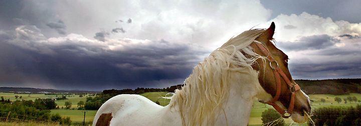 So wird das Wetter: Vorhersagen vom Feld