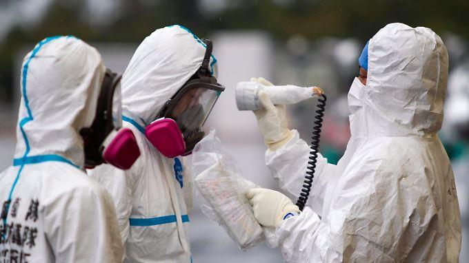 Arbeiter im AKW Fukushima werden auf Strahlung überprüft.