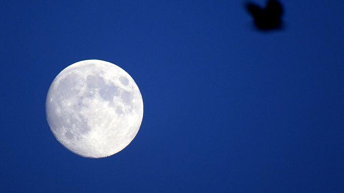 Auf dem Mond gibt es die gleichen Mineralien wie auf der Erde.
