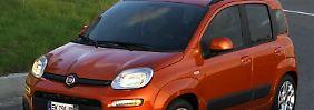 Der Panda ist seit dem Start der Baureihe eines der wichtigsten Fiat-Modelle.