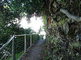 Ein schmaler Weg führt am südöstlichen Teil der Küste entlang. Er beginnt am Cheltenham Beach.