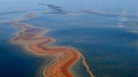 Entschädigung für Ölpest-Opfer: BP zahlt 7,8 Milliarden Dollar