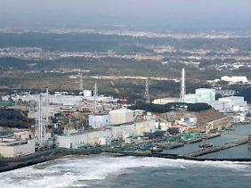 Ein Jahr nach der Reaktorkatastrophe ist die Lage in dem havarierten AKW alles andere als stabil.