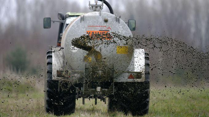 Ein Landwirt bringt Gülle auf einem Feld aus.