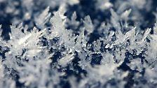 Die Schönheit des Schnees: Kälte in Kristallform