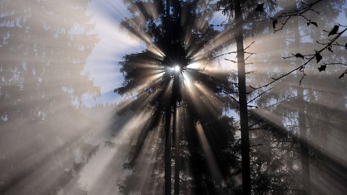 Schneller Als Licht