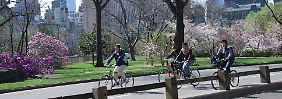 Fahrradfahrer im New Yorker Central Park.