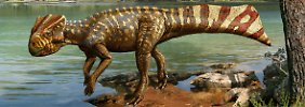Die Computergrafik zeigt die gehörnte Dinosaurierart Koreaceratops hwaseongensis.