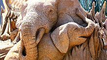 Herdentiere: Jungtiere wachsen behütet in der Herde ihrer Mutter auf.