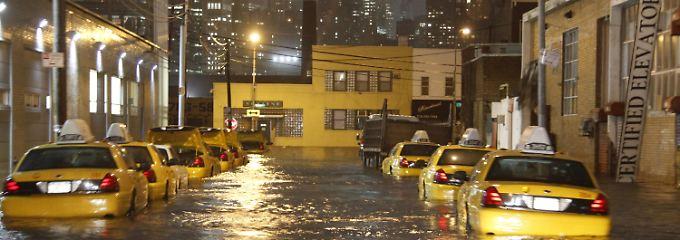 New York in der Hurrikan-Krise: Auf Long Island überraschte die Flut eine Reihe der berühmten gelben Taxis.