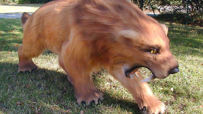 Fossile Funde von urzeitlichen Säugetieren sind äußerst selten.