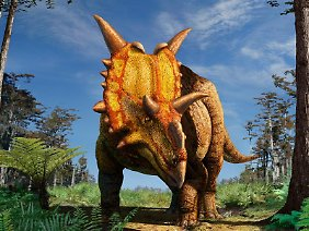 So könnte der Xenoceratops ausgesehen haben.