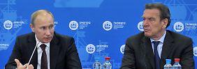 Männerfreundschaft: Putin (l.) und Schröder auf dem International Economic Forum in St.Petersburg im Juni diesen Jahres.