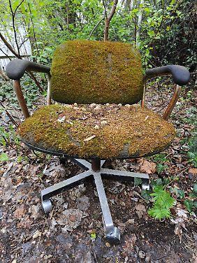 Die Stühle haben schon Moos angesetzt.