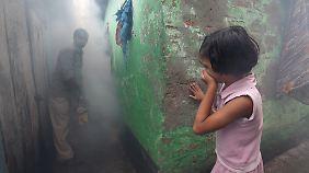 In Kalkutta werden Mücken bekämpft.