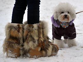 Hauptsache Mensch und Tier sind gut gegen die Kälte geschützt.