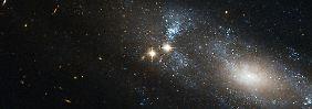 Älteste jemals gesichtete Sterne?: Hubble findet sieben Galaxien