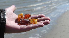 Das Meer spült herrliche Stücke an Land.