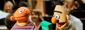 Einblicke in Kinderhirne: Sesamstraße hilft Forschern