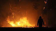 Zehntausende Feuerwehrleute sind im Einsatz, doch immer wieder brechen sich die Flammen ihre Bahn.