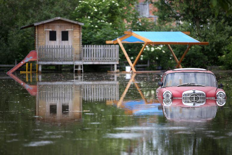 Das Hochwasser trifft Deutschland völlig unvorbereitet und bringt viele um ihr Hab und Gut. Aber nicht nur die Menschen leiden unter den Folgen der Flut.