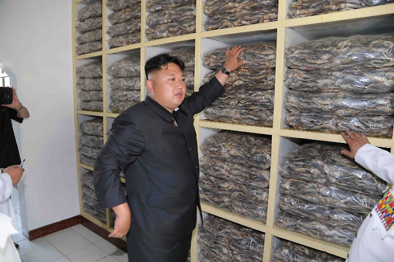 Kim Jong Un setzt nach dem Tod seines Vater Kim Jong Il eine gute Tradition fort und verbringt große Teile seiner Arbeitszeit damit, das Land zu bereisen und den reichen Fortschritt Nordkoreas zu betrachten.